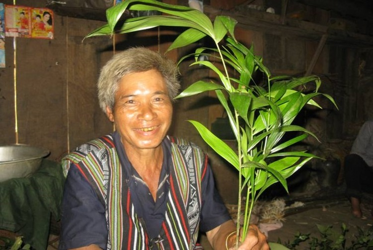 A Ro - Vi K Lang 2 village Elder