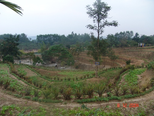 Eco-Farming Designing Skill - HEPA School in Quang Binh
