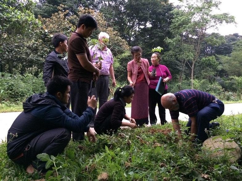 Ecological Livelihood Understanding
