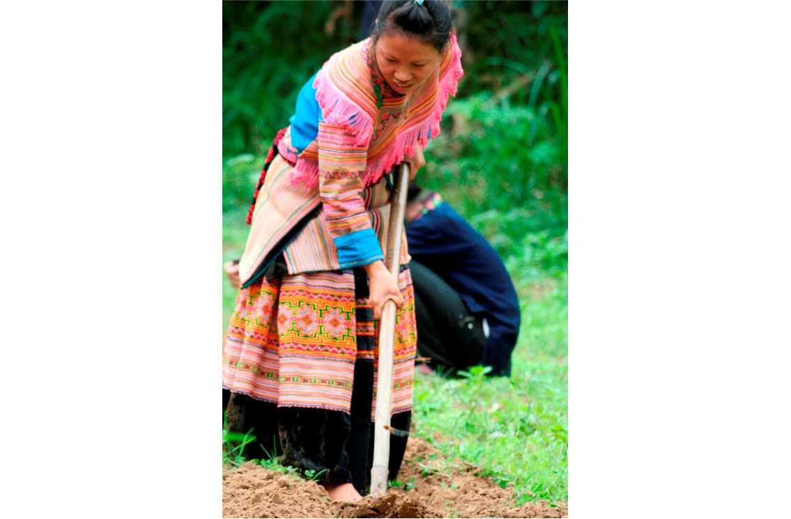 G.T.Chung. Hmong. Viet Nam