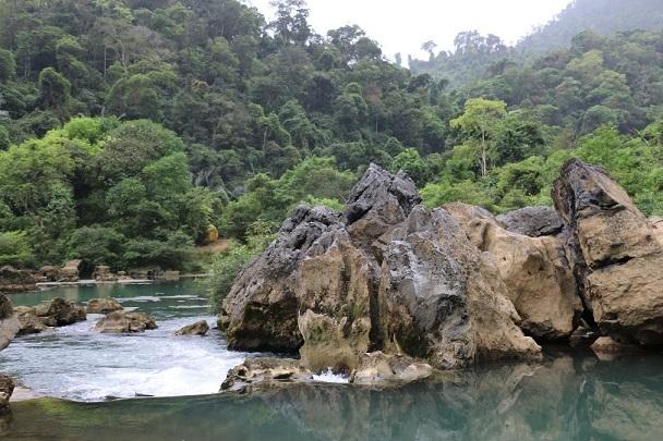 Nuôi ong sinh thái ở Cao Quảng – sự phát triển từ gốc rễ